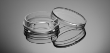 20mm Glass Bottom Cell Culture Dish, TC-treated, Sterile, 200/case